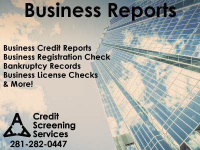 Bankruptcy background check