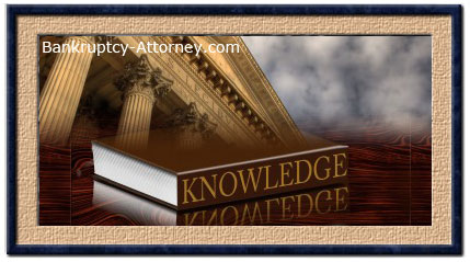 Maui bankruptcy attorney
